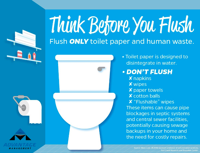 Think before you flush – Protect your pipes